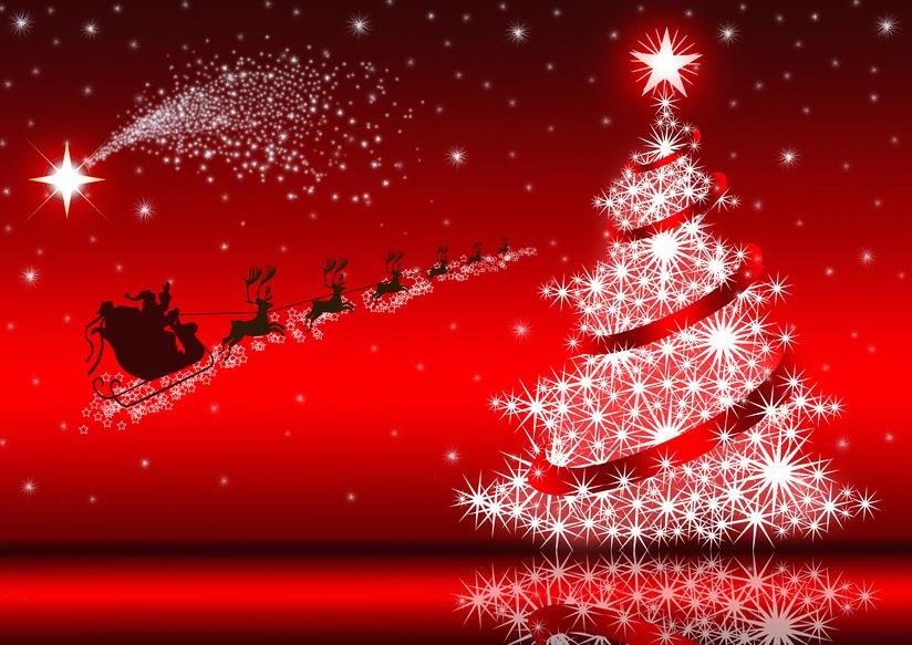 Il programma delle manifestazioni natalizie di Zambrone