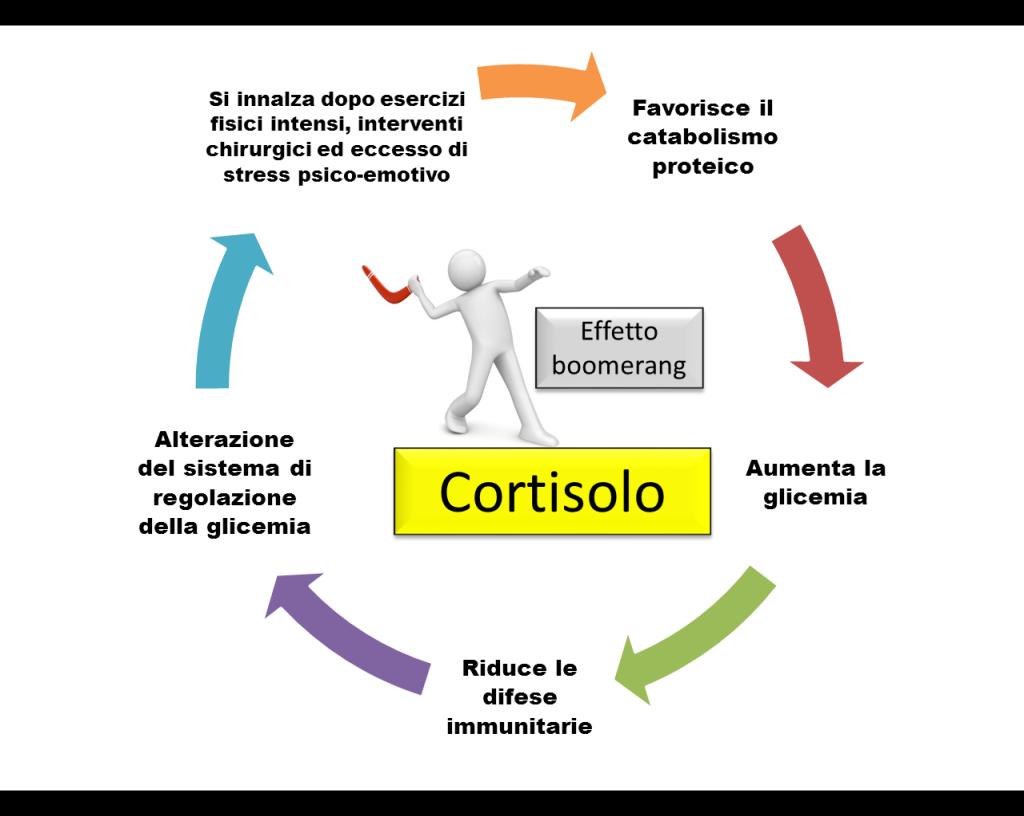 Il cortisolo, l'ormone dello stress!