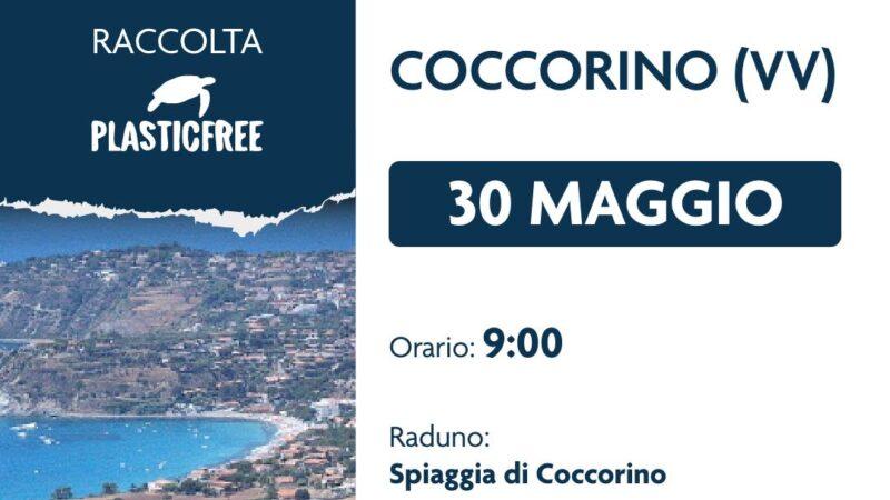 Plastic Free fa tappa a Coccorino