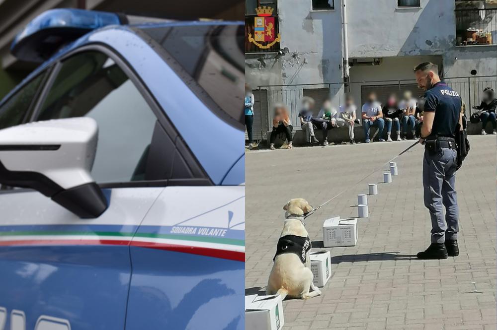 Nicotera: la squadra Cinofili e il cane poliziotto Malakeh incontrano gli studenti