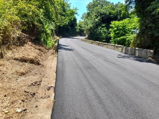 Vibo e la viabilità: La Provincia avvia i primi 17 interventi di pulizia delle strade