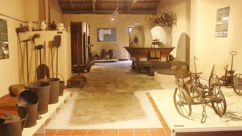 Cercasi volontari per gestire il patrimonio museale di Ricadi: Il Comune ha avviato la selezione