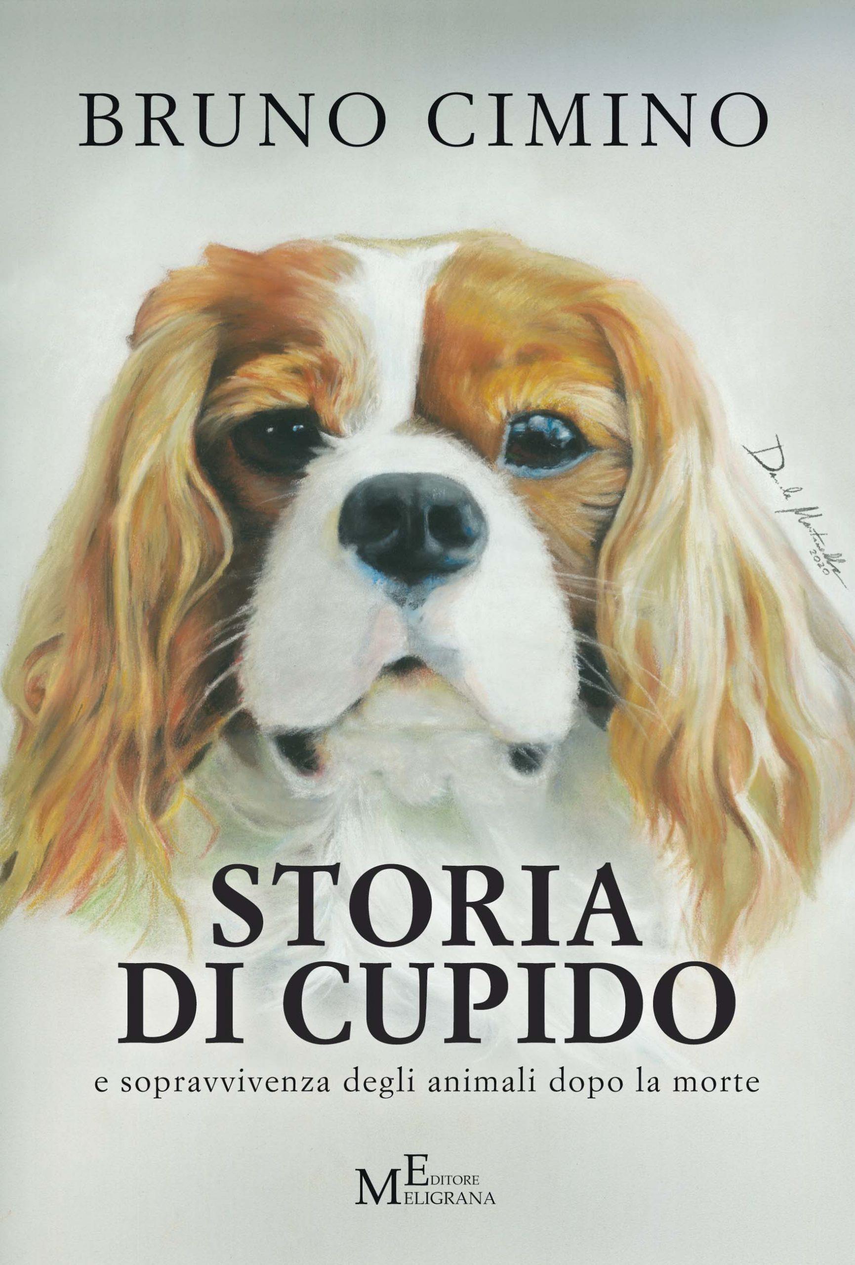 L'ultima opera dello scrittore tropeano Bruno Cimino. Un libro scritto per chi ama gli animali