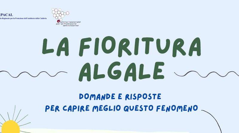 Fioriture Algali: Arpacal spiega il fenomeno anche ai Comuni costieri calabresi