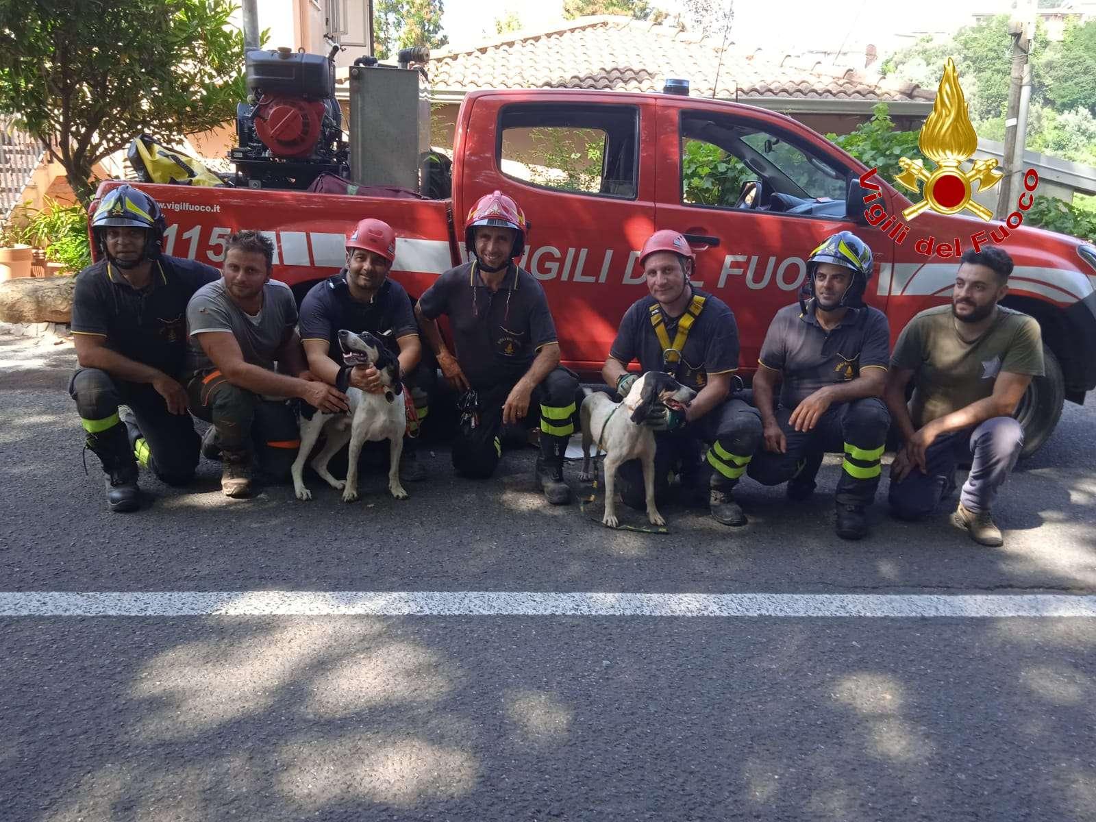 Polia, cani finiscono in un dirupo. Salvataggio dei vigili del fuoco