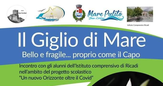 Capo Vaticano e il Giglio di Mare: arriva l'evento che vuole essere un percorso di educazione e informazione ambientale