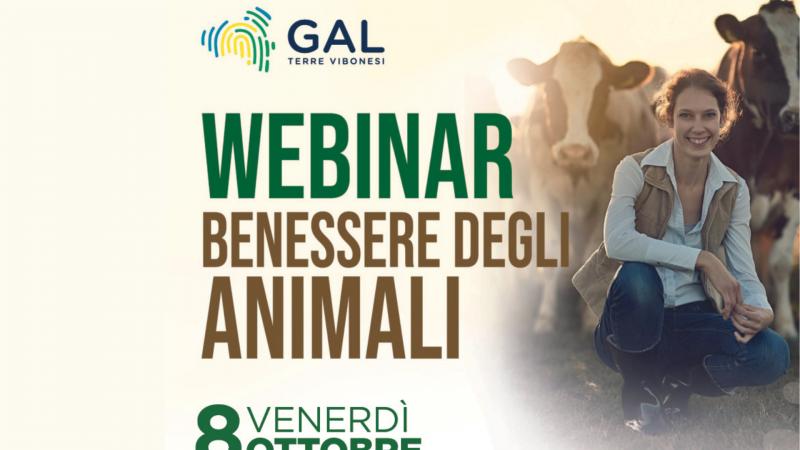 "Gal Terre Vibonesi: webinar in ""Benessere degli animali"""